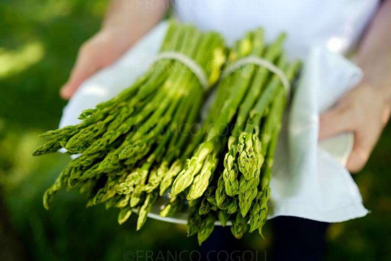 Austria - Asparagus gourmet