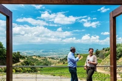 Calabria - Magliocco wine