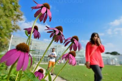 Padua, the new botanical garden