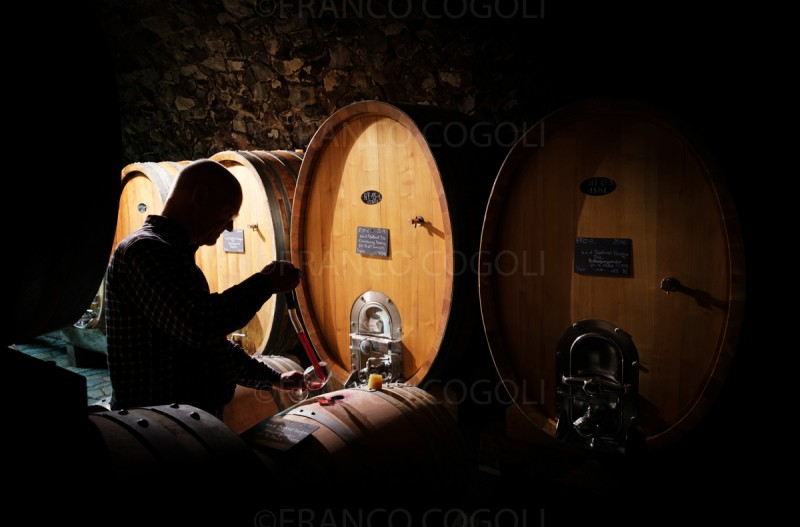Small but fine cellars in South Tyrol