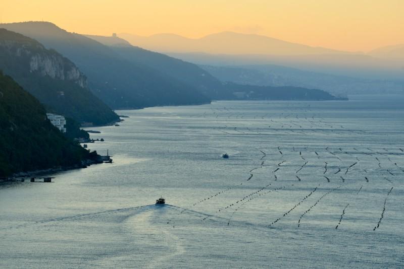 Trieste - Costa dei Barbari